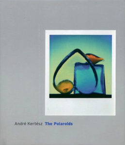andre-kertesz-the-polaroids-livre-photo
